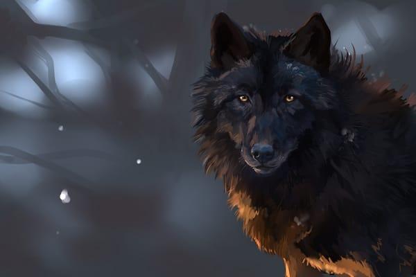 Картинки на рабочий стол телефона волки